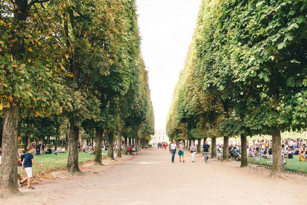 jardin-du-luxembourg-4.jpg