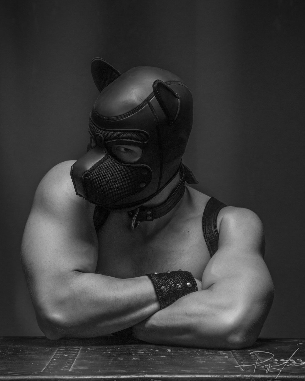 Pup_Stronger.jpg