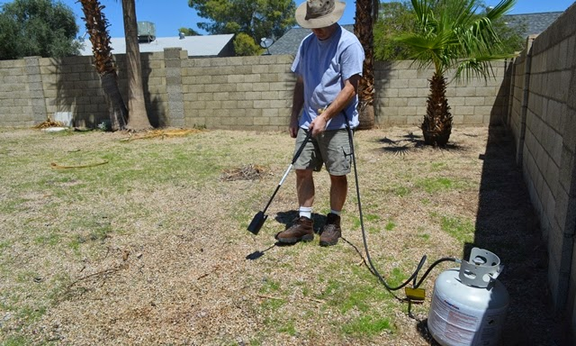 Weed Killing - Taking a flame thrower to this place! — AZ