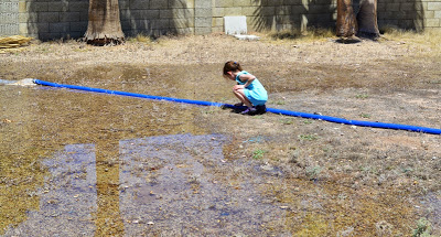 Pumping the swimming pool into the yard