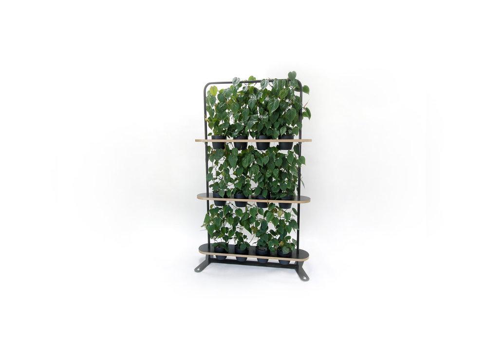 AGILE+PLANT+WALL-Edit.jpg