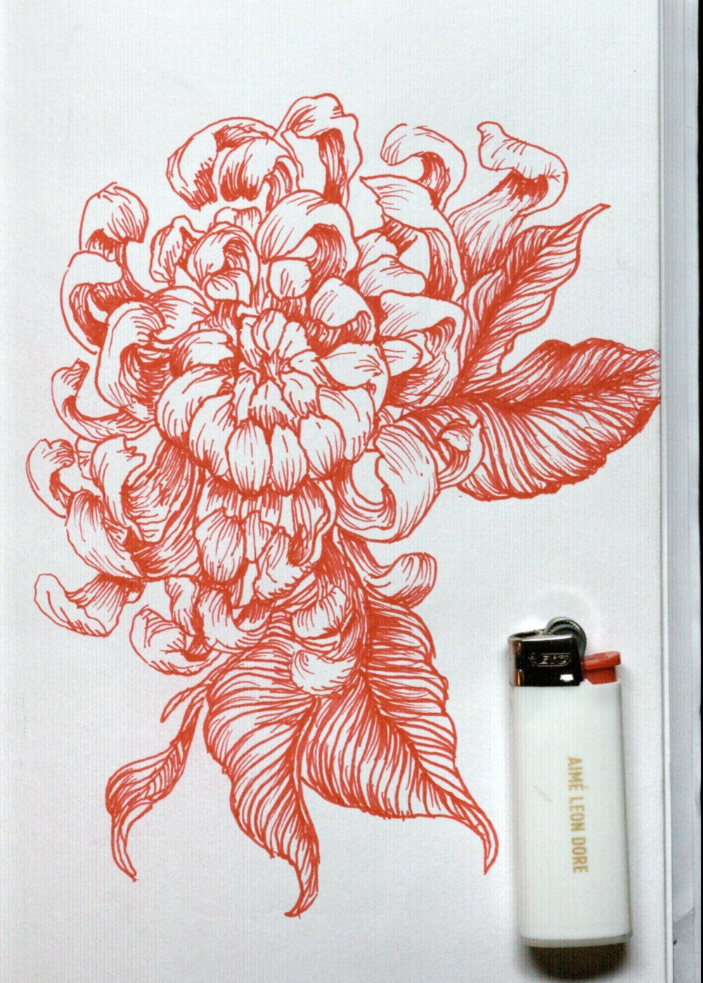 PortfolioChrysanthemum.png
