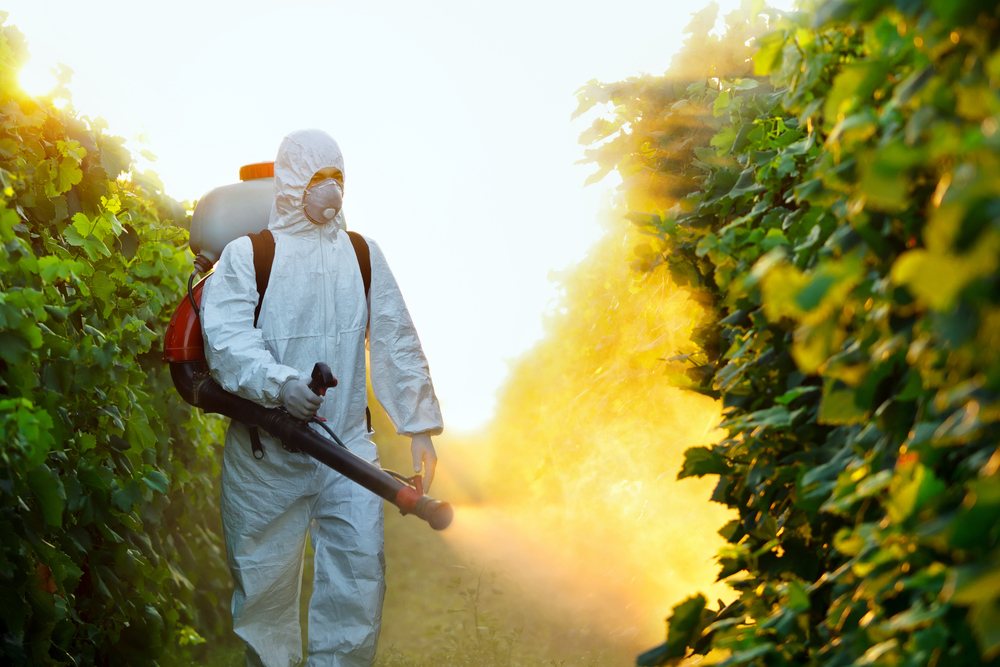 pest-control-services.jpg