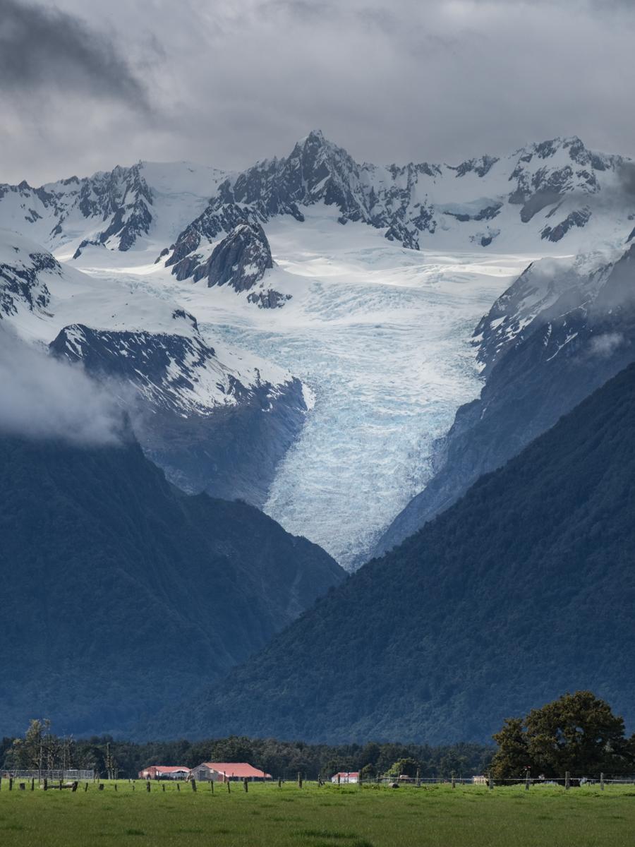 Fox Glacier Portrait