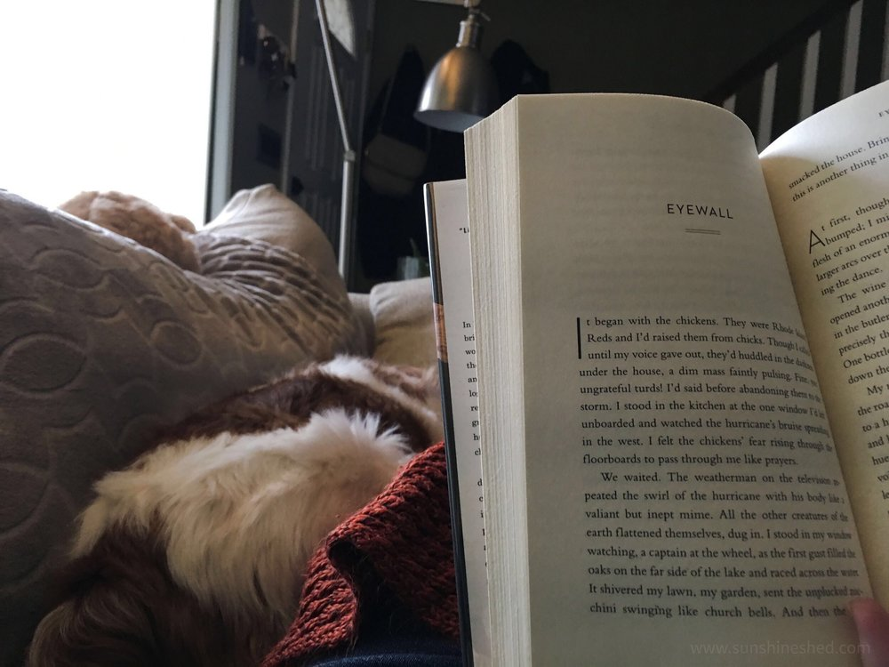 Reading and puppy cuddles. What more can you ask for? Week 8 of 52: My 19 for 2019