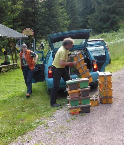 Unloading the mating nuclei from the station wagon. Andreas uses the Kirchain-designed mating nucs. The Belegstelle is set among high alpine forest
