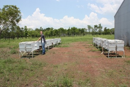 Tas Festing, with his beehives, at Humpty Doo, in the Northern Territory (see Inside article)