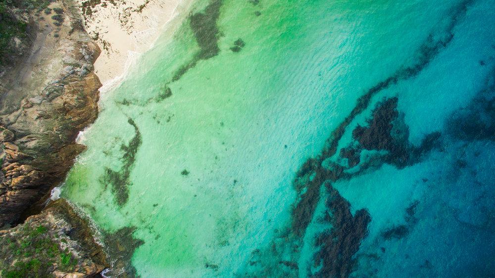 _Ocean-1.jpg