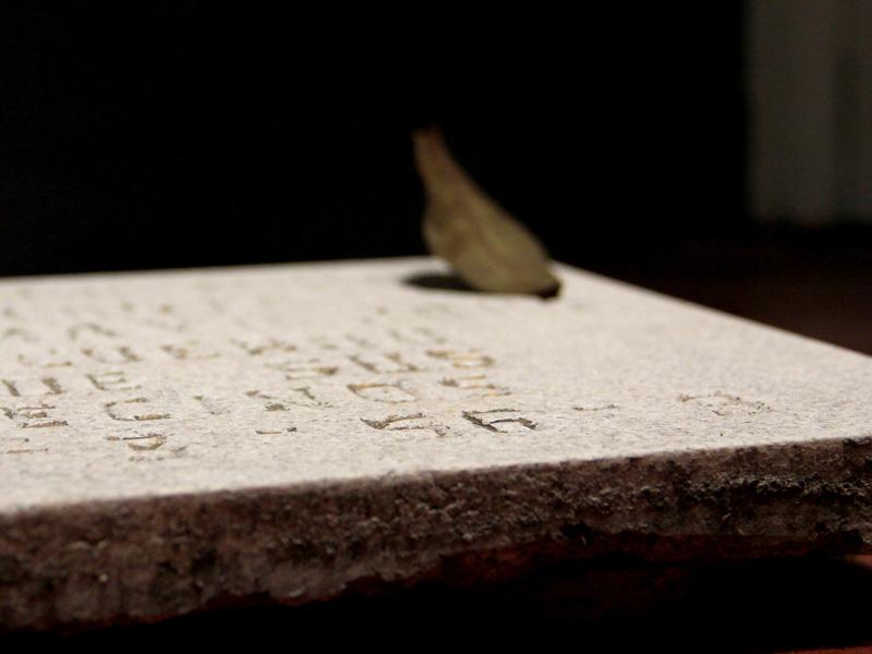 La vida de las cosas muertas / Instalación (Fragmentos de lápidas del Panteón de Dolores de Ciudad de México, hojas inmortalizadas, hilos, motores) / 2012