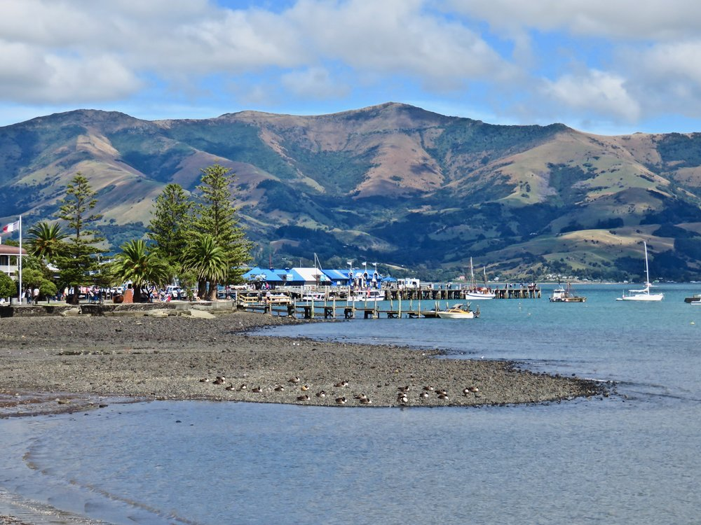Banks Peninsula: Akaroa, the country's first French settlement