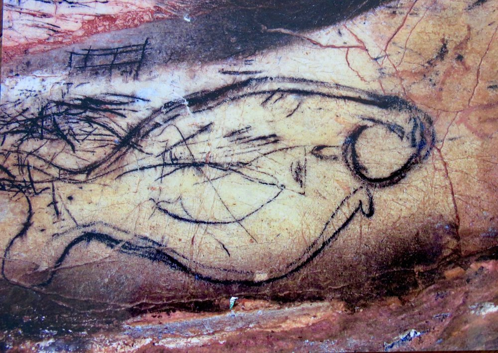 Famous giant fish drawing, Pileta Cave Complex