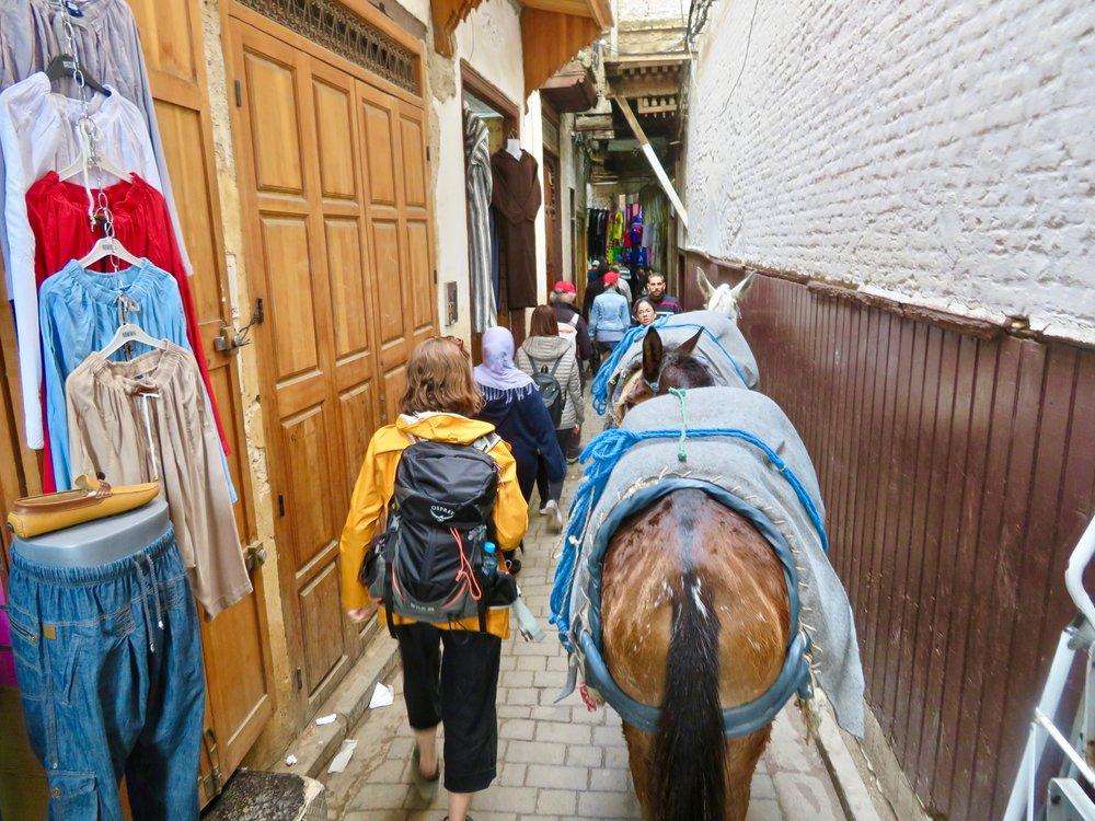 Medieval medina of Fes, a maze of narrow, claustrophobic streets!