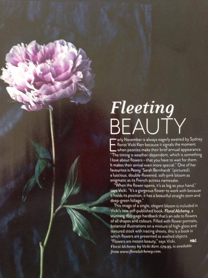 BLUB ABOUT PEONIES WRITTEN BY VICKI KERR IN HOUSE AND GARDEN AUSTRALIA