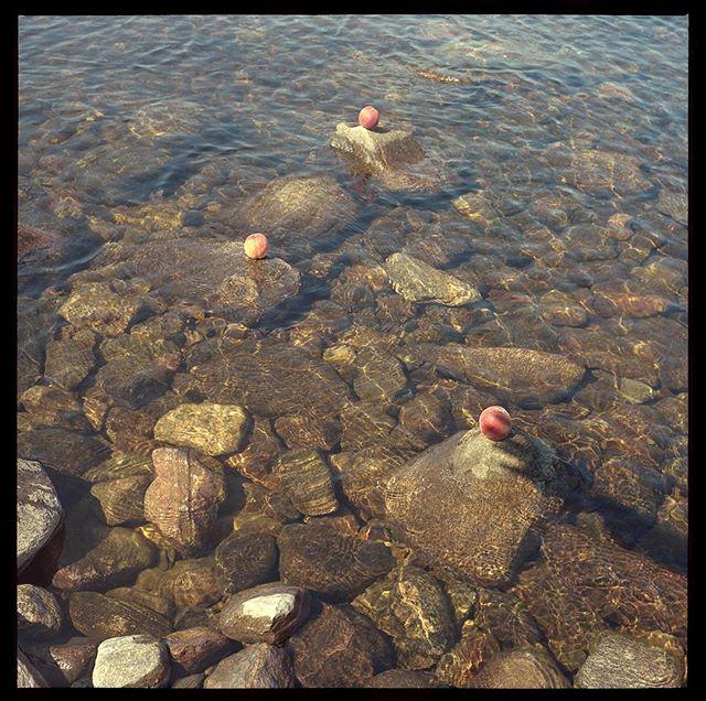Lake Madawaska is on the land of Huron-Wendat, Anishinabek and Algonquin. 🍑 #madawaska #ontario #nativeland #peaches #120 #portra