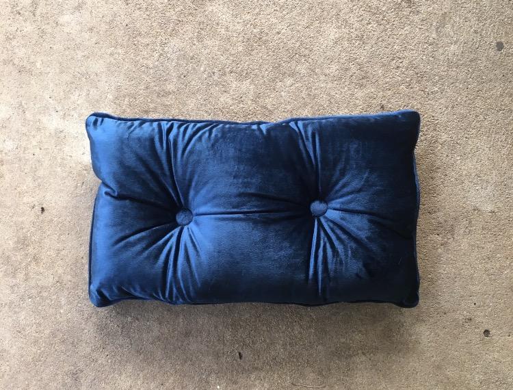 blue velvet cushion.jpg