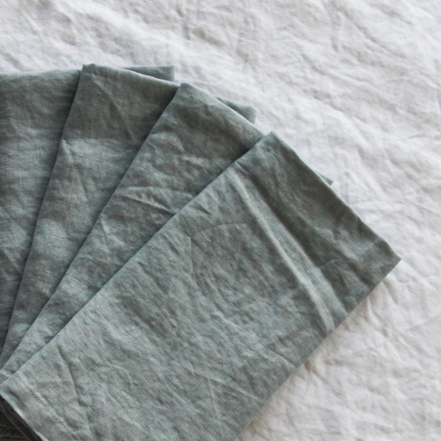 Duck Egg Blue French Linen Napkin  50cm x 50cm  $1.50 each