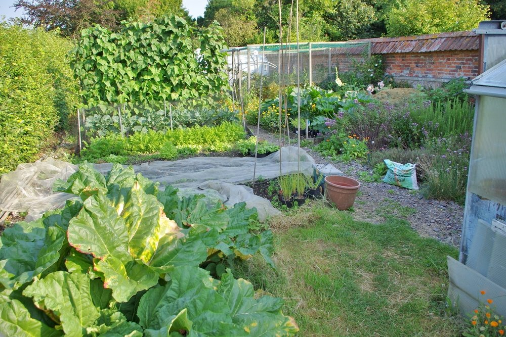 The veg garden at Discover England Tours Church House B&B