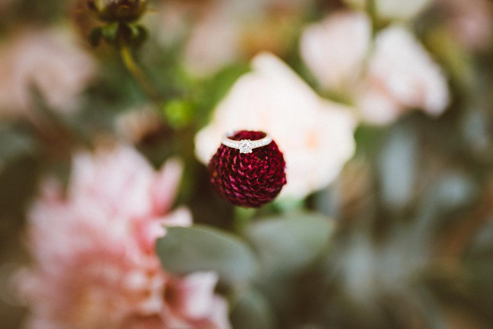 Blog-WEDDING - RYAN + AMY NZ-11.jpg