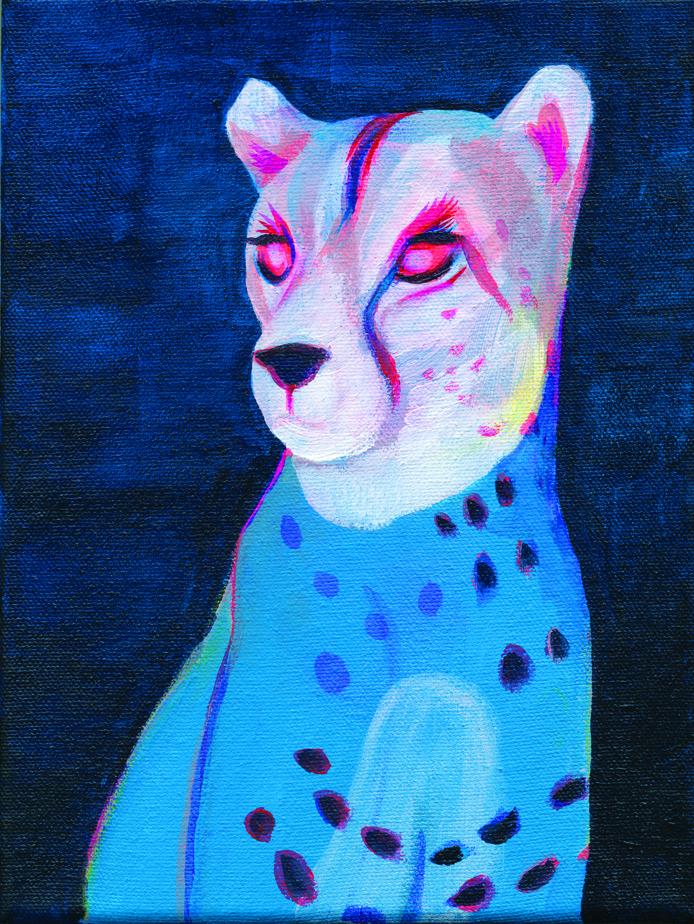 Katrien Matthys-Cheetah