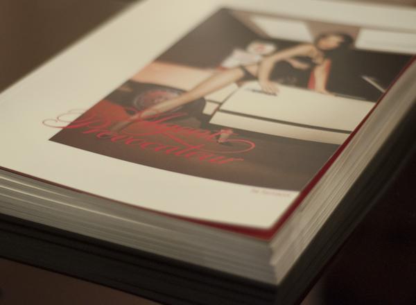 Agent provocateur book