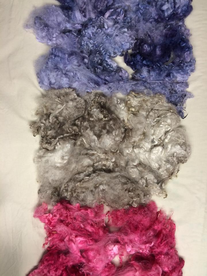 Dye Results