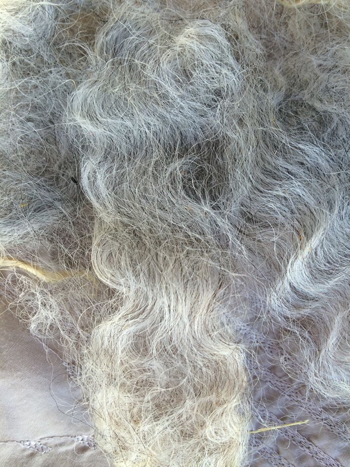 Fleece cotswold sarina