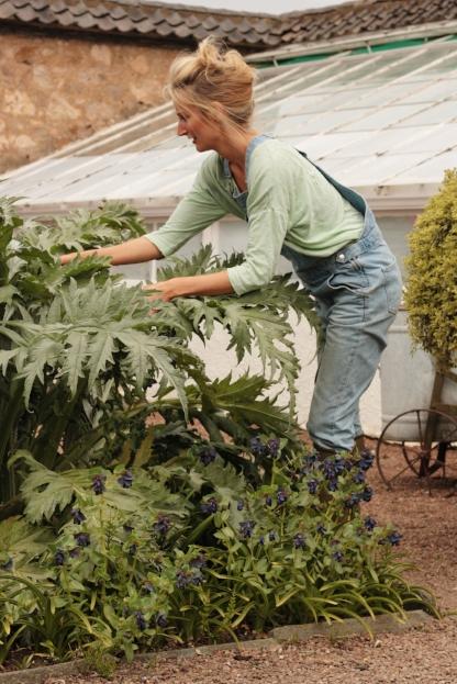 Susie Coupar Lady Gardener 2.jpg