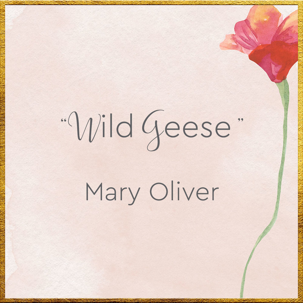 thumbnail-poem-mary-oliver.jpg