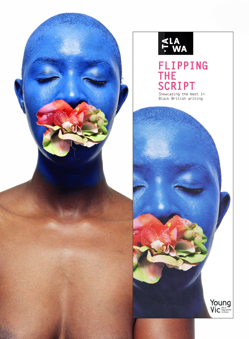 Design, Print and Image Creation for Flipping The Script Showcase