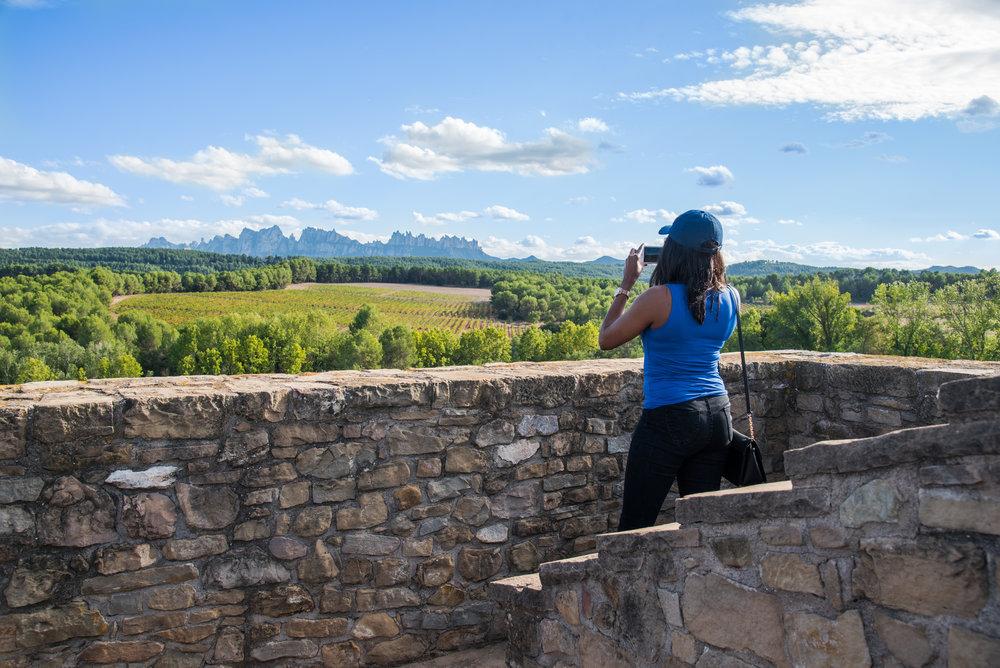 MeetJune Wine & tapas tour in Penedès ( Castlexperience )