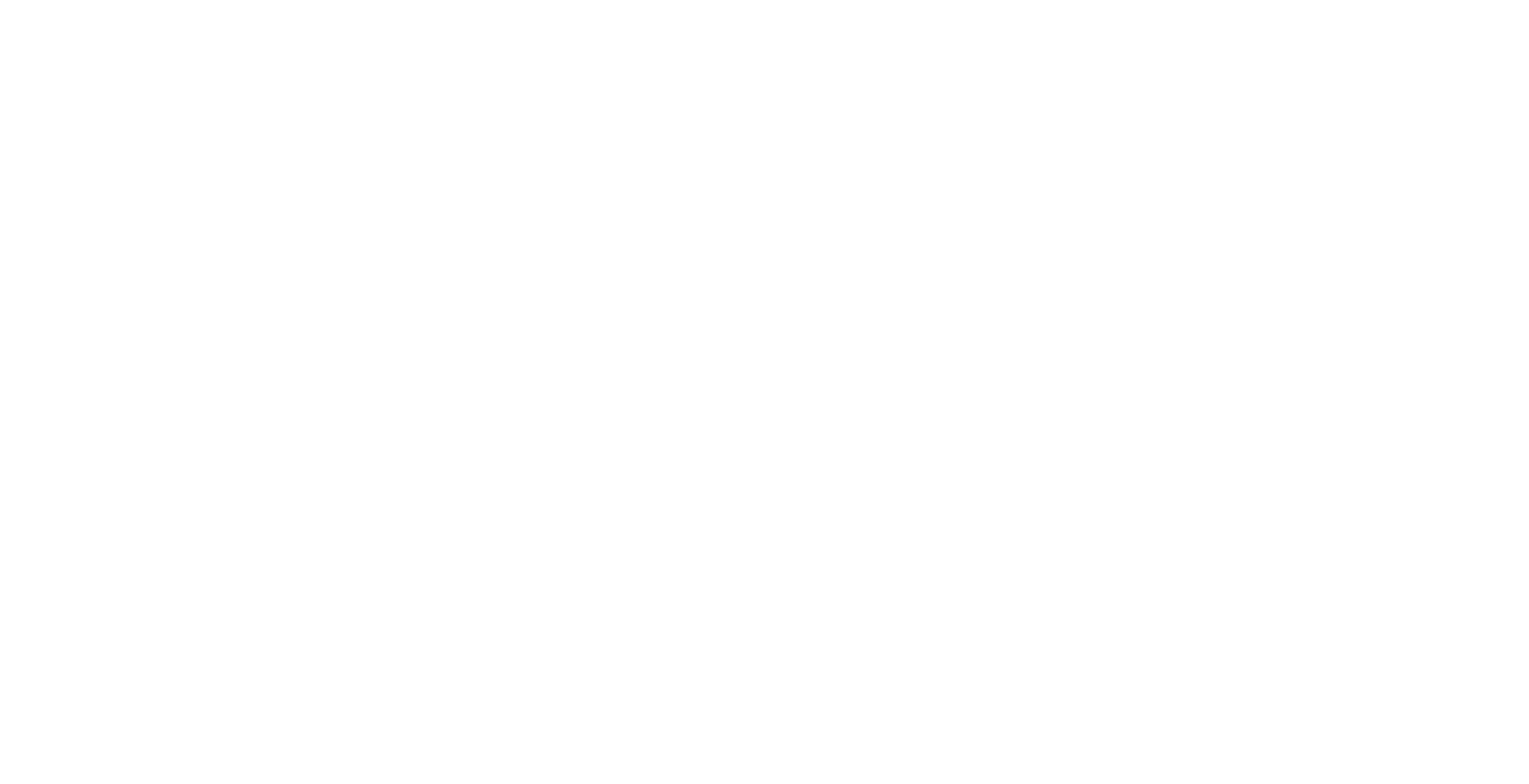 VicVoice Digital