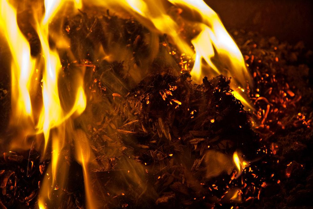 biomass wood pellet supply