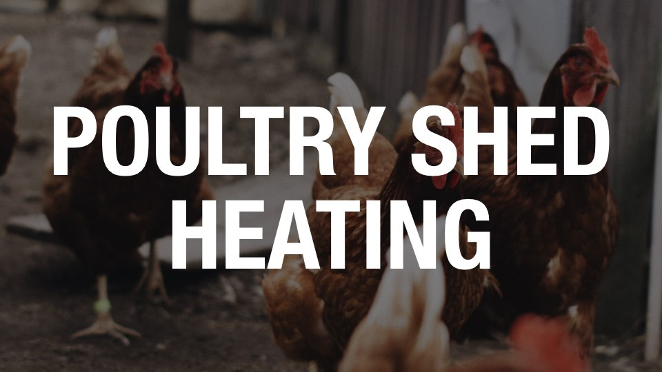 Poultry Shed Heating