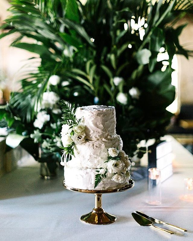 Cake love via @erinandtara 🌿✨