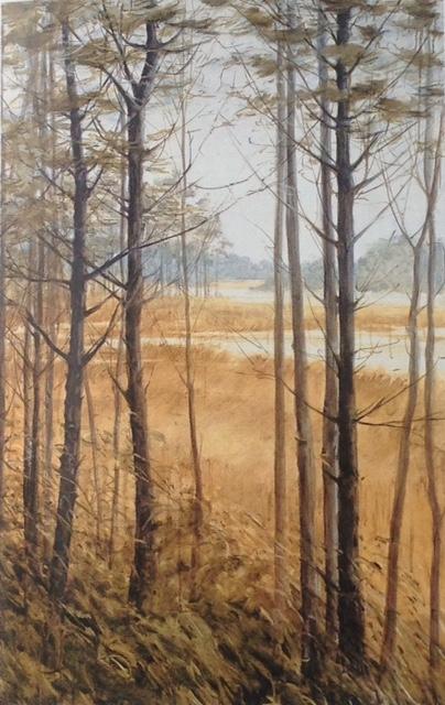 Pine Marsh_Marguerite Robichaux.jpeg