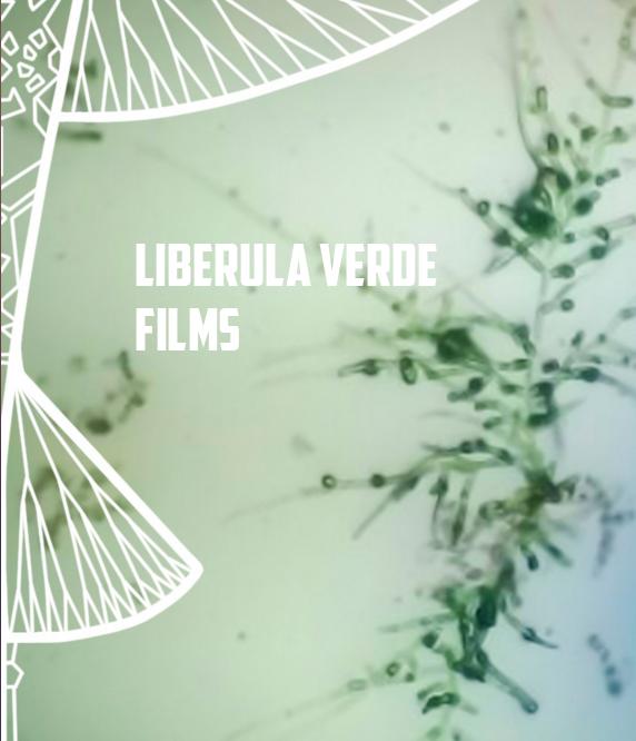 Liberula Verde Films WEB Logo
