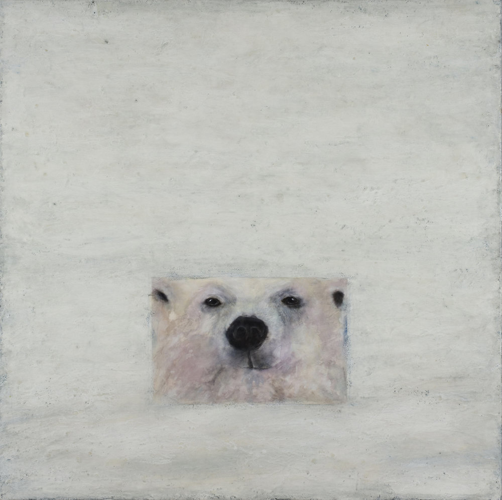 Polar Bear II/Ursus Maritimus II
