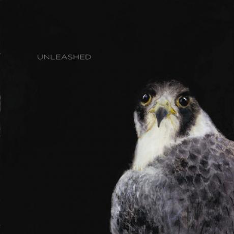 unleashedbook.jpg