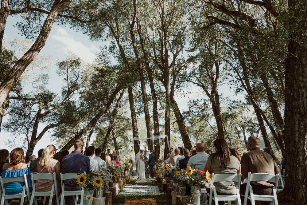 cedarandpines-sunny-wyoming-mountain-wedding-16.jpg