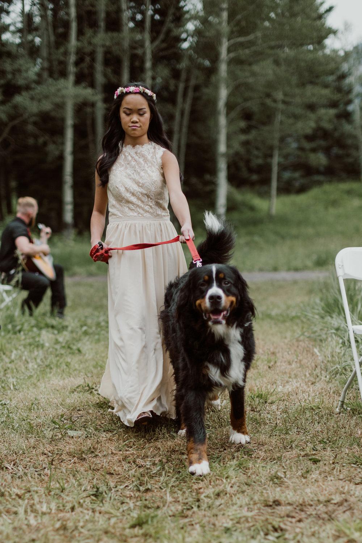 cedarandpines-ouray-colorado-mountain-wedding-11.jpg