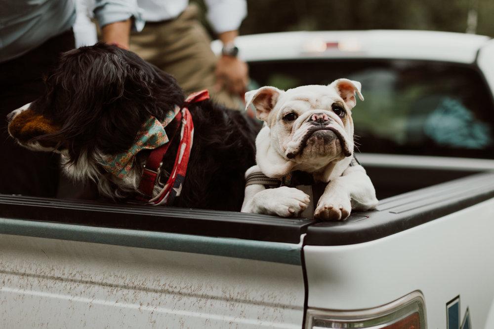 ouray-colorado-adventure-jeep-wedding-38.jpg