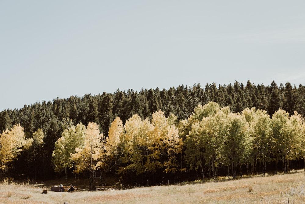 intimate-colorado-fall-wedding-7.jpg