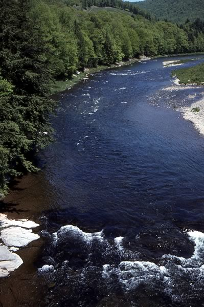 Figure 25. Trout Brook (upper right), emptying into Beaver Kill, New York State.