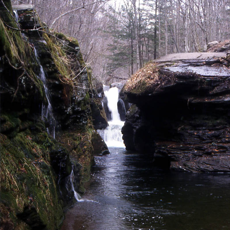Figure 26. Biscuit Brook. Feeder stream for the Neversink River, New York State.