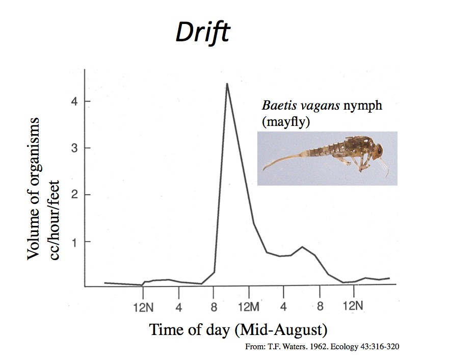 Fig.57 Drift.jpg