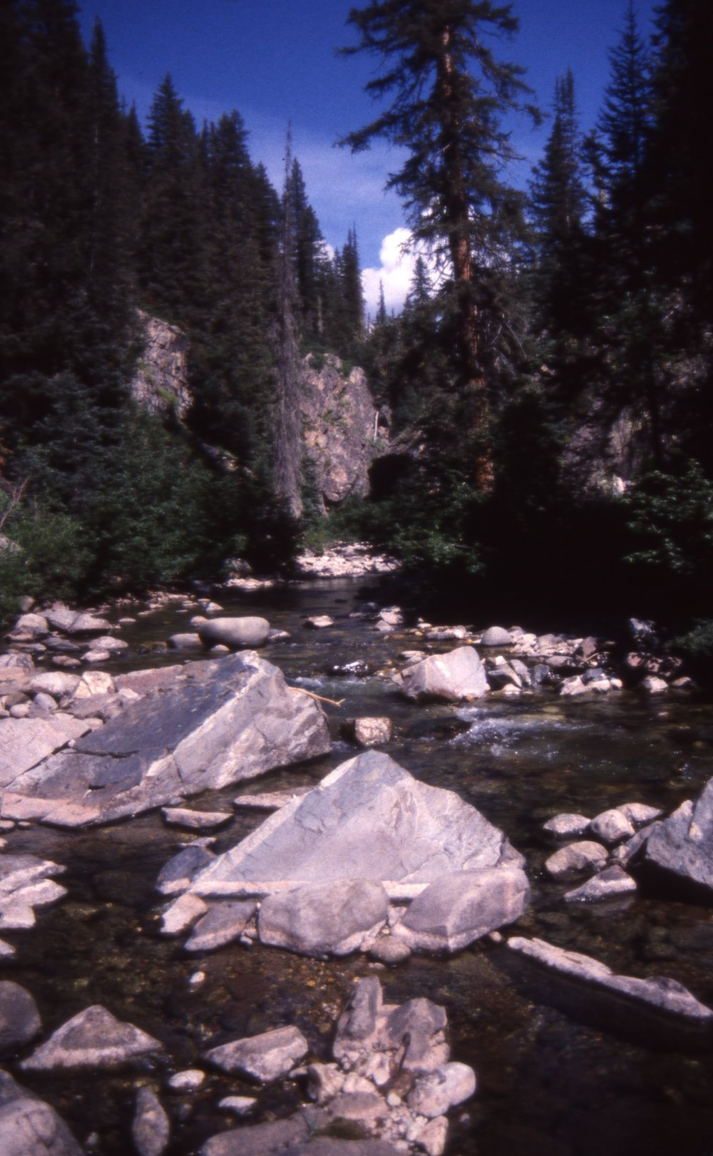 California River