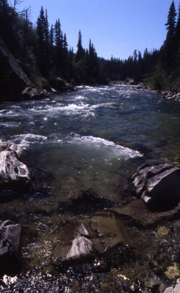 Livingston River, Alberta