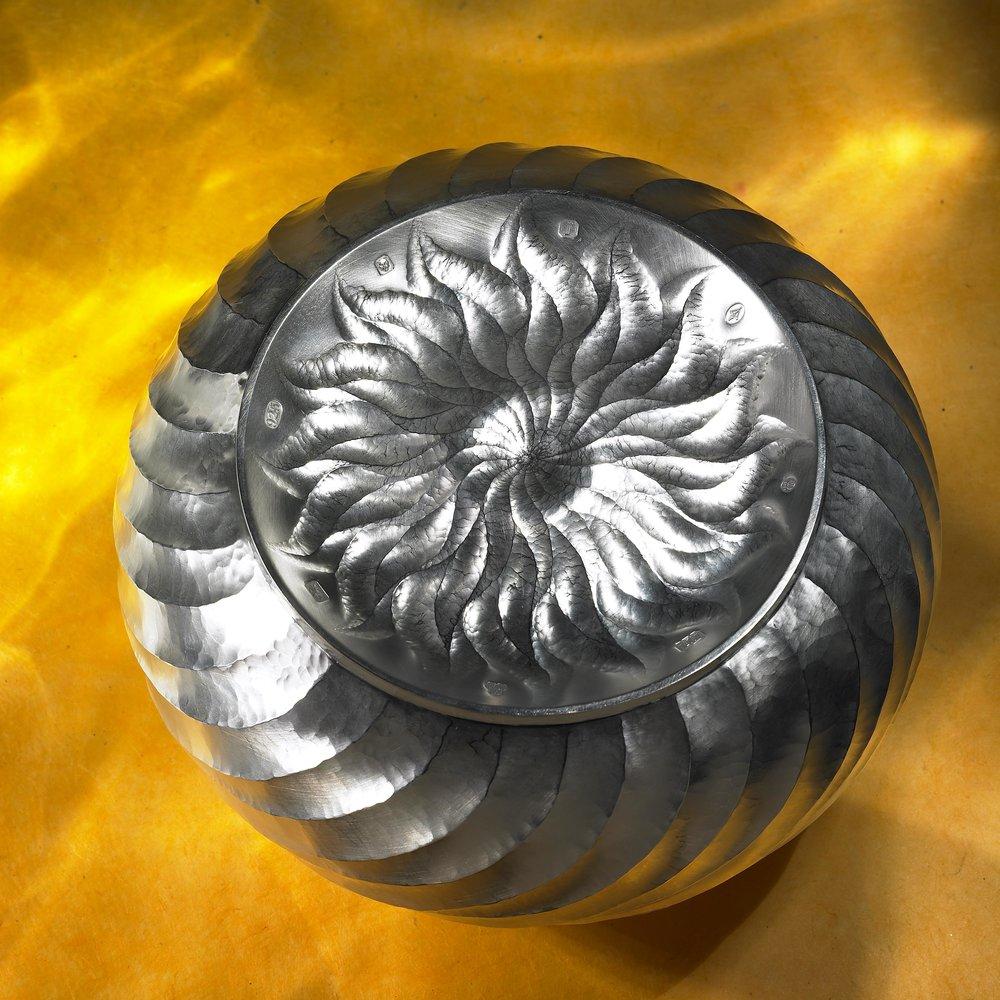 2010_SBDA_Grand Prize_Wayne Meeten-5_lg.jpg