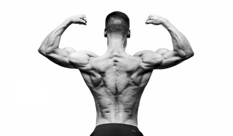 Leif Arnesen The Vegan Gym Back Pose