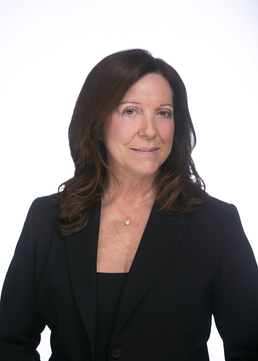 Susan A. DeSantis Senior Project Manager